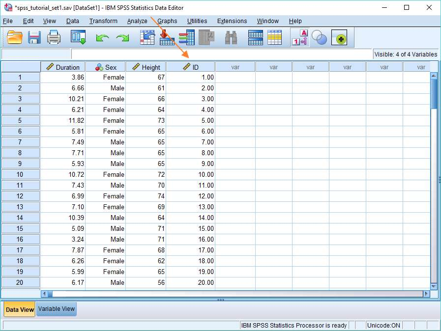 Numeric ID in SPSS
