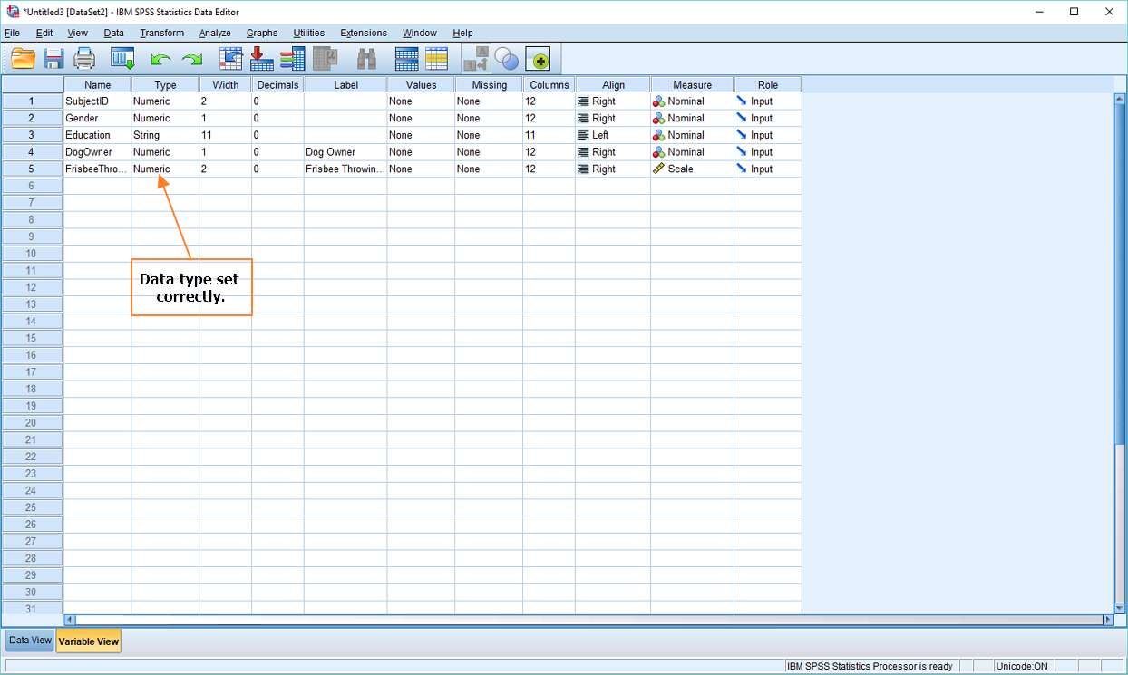 Variable View in SPSS